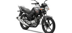 Yamaha YBR 125 belakang