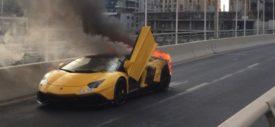 Lamborghini-Veneno_Roadster-2014-1600-01
